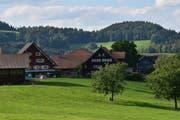Im Weiler Fridlingen begann alles: Im Haus mit den gelben Fensterläden wohnt heute Stefan Brändle, 400 Jahre nach Stammvater Rudolf. (Bild: Timon Kobelt)