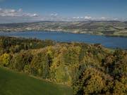 Der Autolenker fuhr von Retschwil (Foto) nach Hitzkirch. (Bild: Pius Amrein)
