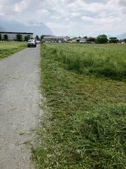 Auf diesem Weg wurde die bewusstlose Frau gefunden. (Bild: dv)