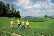 Bewirten auf dem Hergiswiler «Kräuterhof» bald einen Bundesrat (von links): Franz Wermelinger, Martin Theiler, Josef Mahnig und Alois Theiler. (Bild: Philipp Schmidli (23. Juli 2018))