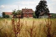 Der «Wartstein» (Mitte) soll als Restaurant erhalten bleiben, für die Nutzung des Waschhauses (rechts) sind Ideen vorhanden. (Bild: Stefan Kaiser (Hünenberg, 24. Juli 2018))