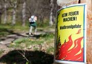 Eine Tafel weist auf das Feuerverbot im Wald hin. (Bild: Arno Balzarini/Keystone)