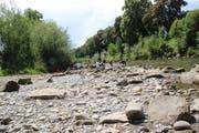 Seit Wochen regnet es zu wenig, das Wasser in der Thur wird knapper. (Bild: Martin Knoepfel)