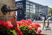Der Dorfbrunnen beim Bellpark in Kriens. (Bild: Philipp Schmidli, 26. Juli 2018)