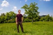 Landwirt Simon Küng bei seiner Nussbaumanlage. (Bild: Philipp Schmidli (Ruswil, 24. Juli 2018))