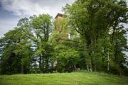 Das Wahrzeichen von Wäldi: Der Turm ist zum Glück nach Napoleon benannt, sonst müsste man entscheiden, ob er Wäldemer oder Wäldinger Turm heissen soll. (Bild: Reto Martin)