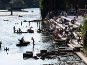 Auch bei grösseren Flüssen wie etwa der Limmat werden derzeit besonders geringe Abflussmengen registriert. (Bild: KEYSTONE)