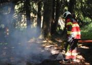 Der Boden wird nach den Löscharbeiten gründlich durchnässt. Bild: Kantonspolizei Schwyz