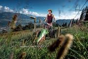 Der Motormäher, ein Fitnessgerät: Schwinger Stefan Ettlin mäht die Wiese auf der Alp Langenmatt oberhalb von Alpnach. (Bild: Pius Amrein (Alpnach, 25. Juli 2018)