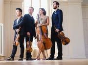 Das Stradivari Quartett um die Cellistin Maya Weber, die das Stradivari Fest in Gersau veranstaltet. (Bild: PD)