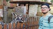Mahmoud A. Sarhan zeigt eines der bemalten Tiere. (Bild: Facebook)
