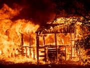 Verheerende Waldbrände suchen Kalifornien heim: Brennender Bau bei Redding. (Bild: KEYSTONE/FR34727 AP/NOAH BERGER)