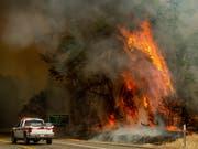 «Wand aus Flammen»: Bei den jüngsten Busch- und Waldbrände in Kalifornien kamen zwei Menschen ums Leben. (Bild: KEYSTONE/FR34727 AP/NOAH BERGER)