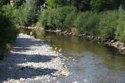 So wenig Wasser führt die Thur in Wattwil selten. (Bild: Ruben Schönenberger)