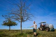 Landwirt Joe Schnider giesst einen trockenen Apfelbaum auf einem dürren Feld seines Hofs in Ballwil. (Bild: Philipp Schmidli, 29. Juli 2018)