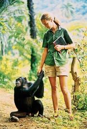 Jane Goodall hat Jahrzehnte mit Affen verbracht und sie studiert. (Bild: Mindjazz)