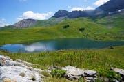 Der Sachsler Seefeldsee liegt zu Füssen des Berges Haupt. (Bilder: Romano Cuonz (Aelggi, 13.Juli 2018))