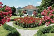 Die Steinegg-Stiftung liess den Rosengarten in Herisau neu gestalten. (Bild: Bilder: APZ/Toni Küng)