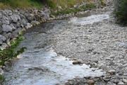 Die Wasser des Neckers (hier bei Brunnadern) beanspruchen derzeit nur halb so viel Platz als in anderen Frühsommern. (Bild: Urs M. Hemm)