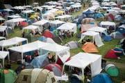 Am meisten Zelte im Sittertobel gab's 2008, am wenigsten 2018. (Bild: Ralph Ribi/29. Juni 2018)