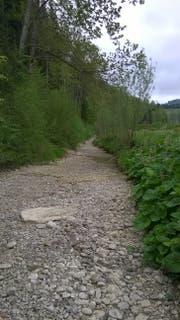 Der trockene Aachbach in Egghalden. (Bild: pd)