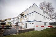 Wie die Schulanlage Auen werden in Frauenfeld während den Sommerferien weitere Kindergärten und Schulanlagen saniert und renoviert. (Bild: Reto Martin)