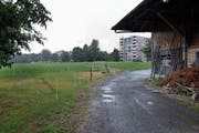 Im Gebiet Allmendhof in Cham soll die Kantonsschule zu stehen kommen. (Bild: Werner Schelbert (6. Juli 2018))