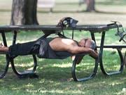Hitzewelle im Osten Kanadas: Ein Mann ruht sich im Schatten eines Baumes in einem Park in Montreal aus. (Bild: KEYSTONE/AP The Canadian Press/GRAHAM HUGHES)