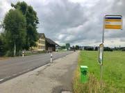 Im Bereich der Bushaltestelle «Nellen» wird die Geschwindigkeit herabgesetzt. (Bild: Andrea Häusler)