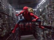 Szene aus dem jüngsten Spider-Man-Kinofilm «Spider-Man: Homecoming» (2017). (Bild: KEYSTONE/AP Sony Pictures - Columbia Pictures/CHUCK ZLOTNICK)