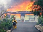 Hunderte weitere Häuser bedroht: Im nordkalifornischen Alpine zerstört ein Buschbrand ein Gebäude. (Bild: KEYSTONE/AP The San Diego Union-Tribune/EDUARDO CONTRERAS)