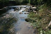 Aus Thurgauer Gewässern soll kein Wasser mehr entnommen werden dürfen. (Archiv/Susann Basler)