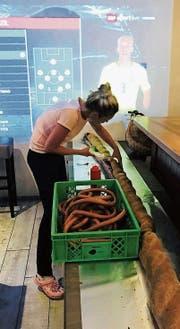 """Inhaberin des """"Malu"""" Manuela Roiko setzt den Hot Dog zusammen. (Bild: PD)"""