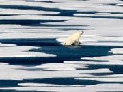 Das Arktis-Eis schmilzt rasant weiter. Einer der Gründe: Laut einer US-Untersuchung haben die Emissionen der drei schädlichsten Treibhausgase Kohlendioxid (CO2), Methan und Lachgas 2017 neue Rekordausmasse erreicht. (Bild: KEYSTONE/AP/DAVID GOLDMAN)