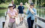 Die Naturschützer richten mit Hilfe der Gemeinde am Rhein eine Ruhezone für Wasservögel ein. (Bild: Reto Martin)