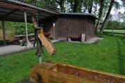 Der gedeckte Sitzplatz der Vereinshütte der Wartauer Fischer am Mühlbach muss zurückgebaut werden. (Bild: Heini Schwendener, 13. Mai 2014)