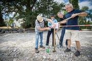 In Eschenz richten Naturschützer mit Hilfe der Gemeinde am Rhein eine Ruhezone für Wasservögel ein. (Bild: Reto Martin)