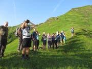 Exkursionsteilnehmer beobachten Steinböcke im Gebiet Tiergärten/Gitschen. (Bild Kari Kempf, Attinghausen, 5. August 2018)
