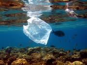 Einweg-Plastiksäcke zählen zu den häufigsten Dingen, die im Abfall an Neuseelands Küsten gefunden werden. (Bild: KEYSTONE/EPA/MIKE NELSON)