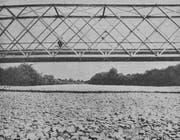 Die Thur bei Pfyn ist 1947 nur noch ein Kiesbett. Kein einziger Tropfen Wasser fliesst mehr. (Bild: Photo Baumgartner, Thurgauer Zeitung vom 22. August 1947)