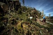 Nach dem Sturm Lothar verunglückten im Jahr 2000 zahlreiche Forstarbeiter tödlich - dieses Mal kam es zu deutlich weniger Unfällen (Archivbild: Pius Amrein)