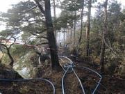 In einem abgelegenen Waldstück im Kanton Jura brach am Sonntagnachmittag ein Brand aus. Weil die Stelle für die Feuerwehrleute schwer zugänglich war, wurde auch ein Löschhelikopter eingesetzt. (Bild: Kantonspolizei Jura)