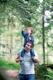 Andreas Hürlimann auf seinem Waldausflug mit Sohn Arun. (Bild: Maria Schmid (Steinhausen, 25. Juni 2018))