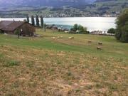 Blick auf einen Bauernhof in Wilen bei Sarnen. (Bild: PD)