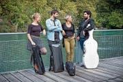 Anna Brunner, Annina Wöhrle, Marko Milenković und Ofer Canetti (von links nach rechts) bilden aktuell das Amar Quartett. (Bild: PD)
