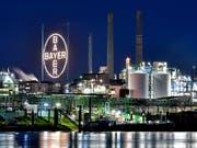 Die Aktien des deutschen Pharmariesen Bayer sind wegen des Glyphosat-Urteils in den USA stark unter Druck. (Bild: KEYSTONE/EPA/SASCHA STEINBACH)