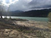 So präsentiert sich das Wissibachdelta nach Abschluss der wasserbaulichen Massnahmen. Das neu geschaffene Flachufer mit Wechselwasserzone wird im Herbst 2018 noch bepflanzt und mit Totholzelementen ökologisch aufgewertet. (Bild: PD)