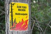 Eine Tafel weist auf das Verbot im Wald hin. (Bild: Dominic Steinmann/Keystone)