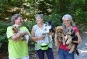 Yvonne Münger, Anita Koller und Astrid Hess (von links) im Uzwiler Wald, bevor sie sich mit ihren Hunden auf den Sozial-Spaziergang begeben. (Bild: Christoph Heer)