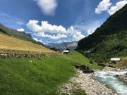 Die Centralschweizer Kraftwerke wollen die Meienreuss für ein neues Laufwasserkraftwerk nutzen. (Bild: Kurt Eichenberger)